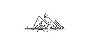 icm_logo_resized_no_bg